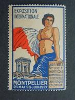 Vignette Exposition Agricole Viticole Horticole Commerciale Industrielle Artistique Coloniale Montpellier Hérault 1927 - Cinderellas