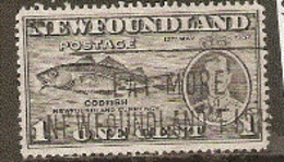 Newfoundland  1937 SG  257  1c  Fine Used - 1908-1947