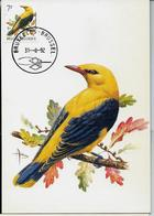 CM Du N° 2476  Loriot  -  Wielewaal   Obl. Bruxelles - Brussel  31/08/1992 - 1985-.. Oiseaux (Buzin)