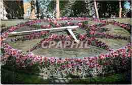 CPM Versailles L'Horloge Florale - Versailles