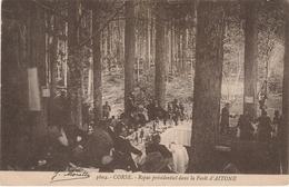 Corse Du Sud.  Repas Présidentiel Dans La Forêt D' Aïtone. - France