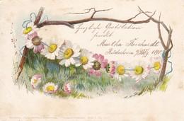 AK Kette Aus Gänseblümchen - Künstlerkarte - 1898 (49594) - Illustrateurs & Photographes