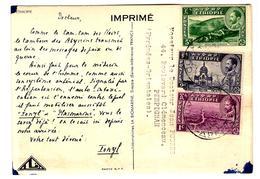 31392 - Publicitaire  Pour IONYL - Ethiopie