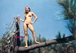 Photo : Montalivet Les Bains,  Le Camping Naturiste, Photo D'une Ancienne Carte Postale,  2 Scans - Nus Artistiques (1960-…)