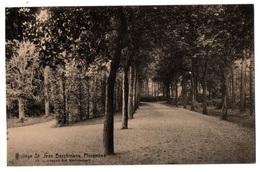 FLORENNES - College Saint Jean Berchmans - Avenue Des Marronniers - Cpa Belgique - Florennes