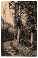 FLORENNES - College Saint Jean Berchmans - Charmille Du Verger - Cpa Belgique - Florennes