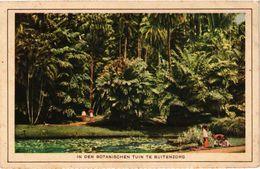 CPA AK Indonesia In Den Botanischen Tuin Te Buitenzorg (360377) - Indonésie