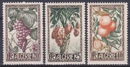 Algerien Algeria Algerie 1950 Landwirtschaft Agriculture Obst Früchte Fruits Weintrauben Datteln Orangen, Mi. 290-2 ** - Algeria (1924-1962)