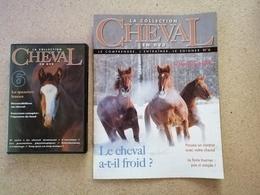La Collection Cheval En DVD + Fascicule N° 6 - Documentaire