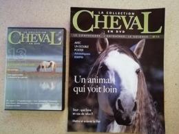 La Collection Cheval En DVD + Fascicule N° 13 - Documentales