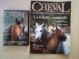 La Collection Cheval En DVD + Fascicule N° 16 - Documentaire
