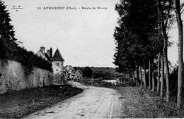 CPA  - 18 - APREMONT - Route De Neuvy - France