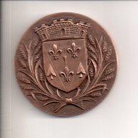 REF MON3  : Médaille Bronze 74 Gr 50mm Signée AH TORCHEUX Ville De Villepinte Armoirie - Toeristische