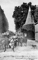 CPA  - 51 - BAYE - Rue De Sézanne Vers L'entrée Du Château - Troupeau De Vaches Avec Leur Vachère - Autres Communes