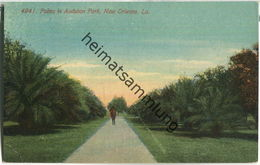 New Orleans - Palms In Audubon Park - Baton Rouge