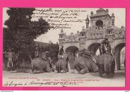 CPA  (Réf: Z 2628)  ANNAM-HUÉ (ASIE VIET NAM) (INDOCHINE) éléphants - Vietnam