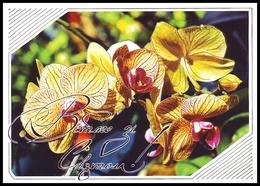 UKRAINE 2008. (7-8293). CONGRATULATE! ORCHIDS. Postal Stationery Stamped Card. Unused Mint - Ukraine