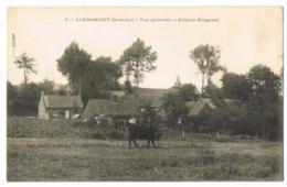 Liéramont - Vue Générale - Edition Ringeval - Viltart - Animée - Vache - Vierge - France