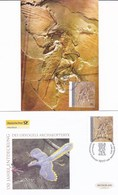 Germany 2011 1 PC + 1 FDC Dinosaurs Fossils - Préhistoriques