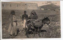 Cpa Algerie Types Chiffonnier Arabe - Algeria