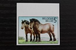 1810 'Ardens Trekpaard' - Ongetand - Zeer Mooi! - Belgique