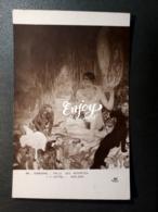 MUSEE SORBONNE DUFAU SALLE DES AUTORITES GEOLOGIE NU MASCULIN PANTHERE SINGE SERPENT AIGLE - Peintures & Tableaux