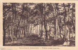 33-gironde-le Moulleau- - France