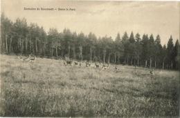 Domaine De Roumont  Dans Le Parc - Bertogne