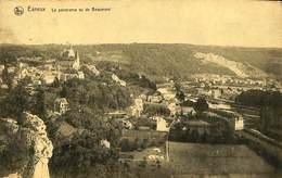 026 785 - CPA - Esneux - Le Panorama Vu De Beaumont - Esneux