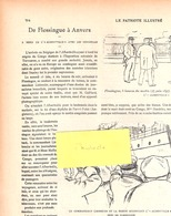 Arrivée Du Congo (Boma)  à Anvers Via Flessingue Du Paquebot Albertville 1 Le 27 Juin 1897-Compagnie Maritime Belge - Geschiedenis