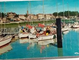 33 - PAUILLAC - LE PORT DE PLAISANCE - L' U.C.P.A. - ANIMÉE - 1982 - Pauillac