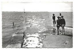 NOIRMOUTIER - Le Passage Du Gois, Le Flot Montant Recouvrant Le Passage Du Continent à L'Ile De Noirmoutier - France