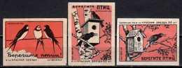 Nature Protection Fauna Bird Matchbox Labels Des étiquettes Et Boîtes D'allumettes Streichholzschachtel-Etiketten - Zündholzschachteletiketten