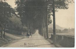 Rochefort - Promenade Du Thiers Des Falizes - Ern. Thill Serie 11 No 26 - Rochefort