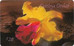 USA - Frontier Comm. - Cattleya Orchid Flower, Remote Mem. 20$, Used - Altri