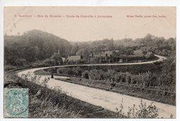CPA 50 . SARTILLY . BOIS DE  MIRANDE  ROUTE DE GRANVILLE . 1906 - Other Municipalities