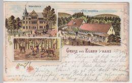 (55452) AK Gruß Aus Elend, Harz, Dependance, Hotel Waldmühle, Litho 1898 - Non Classificati