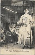 CIRQUE - Mlle MARIA ALEXANDRE - DOMPTEUSE - Femme Avec Plusieurs Lions (au Verso Inscription Elle A était Dévorée Par... - Circus