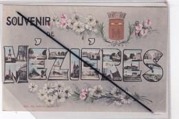 Souvenir De Méziéres (08) Blason ,multivue, Fleurs - Other Municipalities