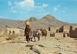 Oman Jabal Akhdar âne ânes - Oman