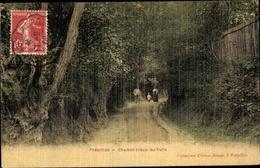 Cp Frepillon Val-d'Oise, Chemin Creux Du Puits - Autres Communes