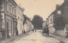 Château Du Loir  Avenue De La Gare - Chateau Du Loir