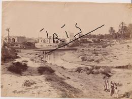 TUNISIE -  GABES  - PHOTOGRAPHIE ORIGINALE GRAND FORMAT - Afrique
