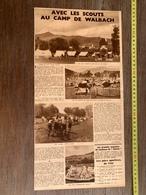 1936 M AVEC LES SCOUTS AU CAMP DE WALBACH HOHNECH LE WETTSTEIN ET LE LINGE - Old Paper