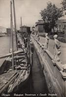 CHIOGGIA-VENEZIA-REFUGIUM PECCATORUM E CANALE PEROTTOLO-CARTOLINA  VIAGGIATA IL 2-8-1950 - Chioggia
