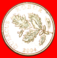 · LATIN TEXT RED OAK: CROATIA ★ 5 LIPA 1998.! LOW START ★ NO RESERVE! - Croatia