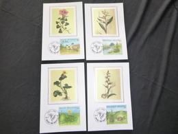 """BELG.1994 2572 2573 2574 & 2575 Mcards Soie/zijde (Brux/Brus) : """" Nature ,Planten/Plantes """" - FDC"""