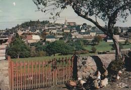 REF.B8 .  58 . CHATEAU CHINON - Chateau Chinon
