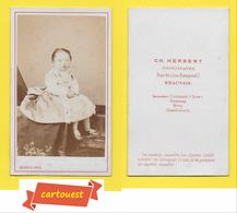 Photographie Albumen ֎ CDV Circa 1880 ♥️ ♥️☺♦♦ BEBE Fille Robe ֎ Maison CH HERBERT Rue Du Lion Rampant BEAUVAIS - Photos