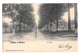 Château De Modave La Drève  1905 - Modave